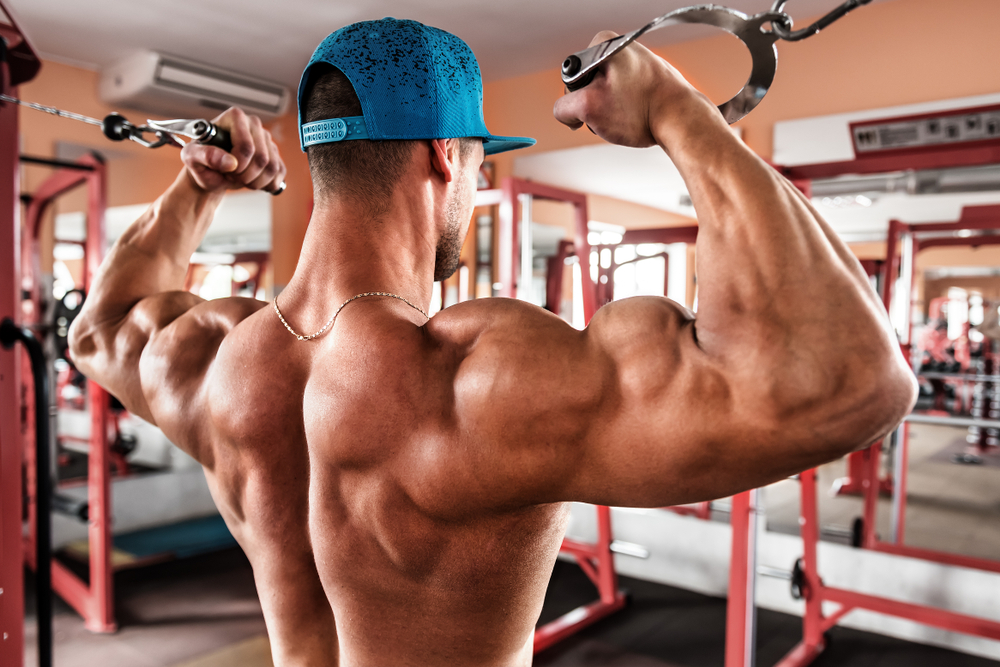 SARMs for Bodybuilding - What are they? Are they safe? Bodybuilding Gold